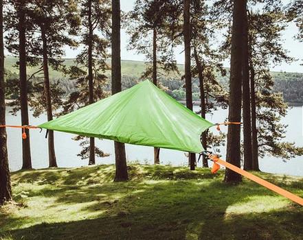 Tree Tent in-situ